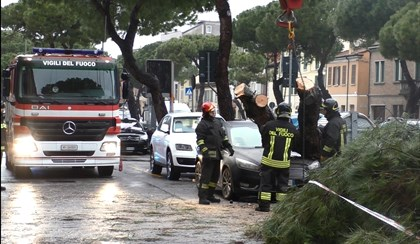 RAVENNA: Pino cade su auto in via Faentina | VIDEO